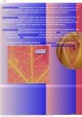 latino latinità regole grammaticali traduzione ... - Il saturatore - Page 2