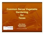 Common Sense Vegetable Gardening for Texas - AgriLife