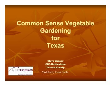 Common Sense Vegetable Gardening for Texas - AgriLife
