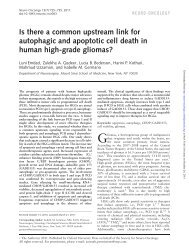 Is there a common upstream link for autophagic and apoptotic cell ...