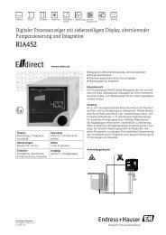 RIA452 - E-direct Shop Endress+Hauser Deutschland