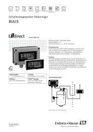 RIA15 - CH (PDF 399,0 kB) - E-direct Shop Endress+Hauser ...