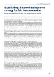 Establishing a balanced maintenance strategy for ... - Endress+Hauser