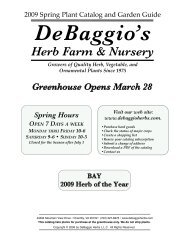 HERBS - DeBaggio's Herb Farm