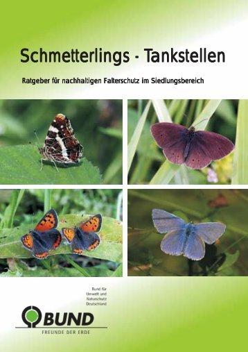 Schmetterlingstankstellen - BUND Bremen