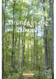 01. Sept. 2011 - Ökozeitung - Singener Wochenblatt