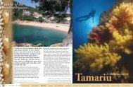 Tamariu - A hidden secret :: X-RAY Magazine :: Issue 25 2008