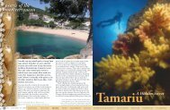 Tamariu - A hidden secret :: X-RAY Magazine :: Issue 25 2008