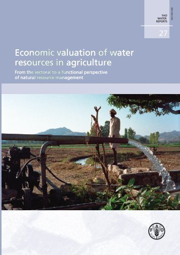 FA O Econom ic valuation of w ater resources in ... - UN-Water