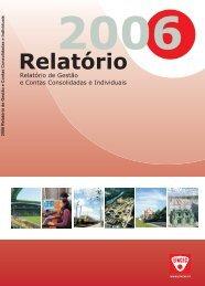 Relatório 2006 - Efacec
