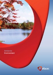 Ambiente_Environment - Efacec