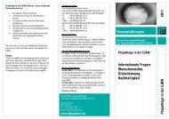 Projekttage in der EJBW: Internationale Fragen