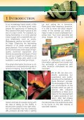 How? Setting up a terrarium Useful tips for ... - Reptiles Greece - Page 3