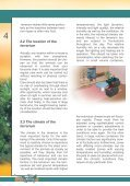 How? Setting up a terrarium Useful tips for ... - Reptiles Greece - Page 6