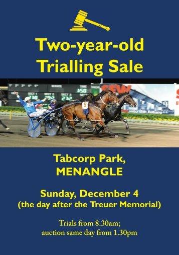 Two-year-old Trialling Sale - Harnesslink