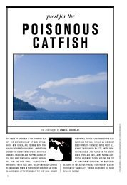Poisonous Catfish - The Explorers Club