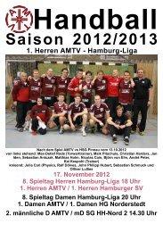 1. Herren Hamburger SV - AMTV Hamburg