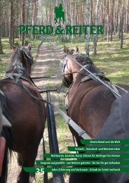 35 - Pferd & Reiter