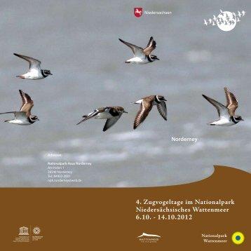 4. Zugvogeltage im Nationalpark Niedersächsisches Wattenmeer ...