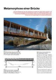 Metamorphose einer Brücke - DI Kurt Pock