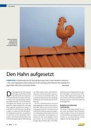 Formsteine - Den Hahn aufgesetzt - Braas