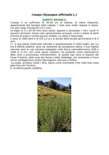 Salvia (Salvia officinalis L - Pianteofficinali.org