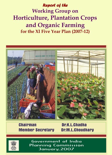 Horticulture Plantation Crops And Organic Farming Of Planning
