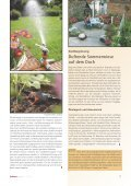 Lebensräume - bauXpert - Seite 7