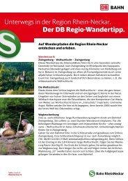 Unterwegs in der Region Rhein-Neckar. Der DB Regio ... - Bahn