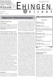22 - Stadt Ehingen