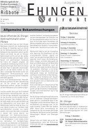 49 - Stadt Ehingen