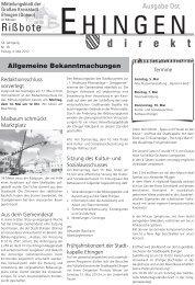 18 - Stadt Ehingen