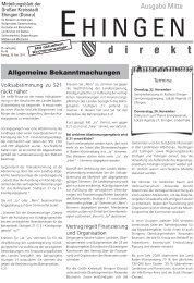 46 - Stadt Ehingen