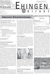 27 - Stadt Ehingen