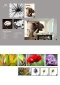 design - Seibel Spanndecken - Seite 4