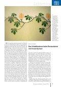 Restaurator im Handwerk – Ausgabe 1/2010 - Kramp & Kramp - Seite 5