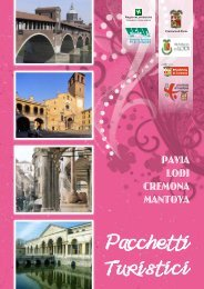 Pavia Lodi Cremona Mantova - Po di Lombardia