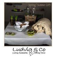 Spring/ Summer 2013 - Ludvigogco