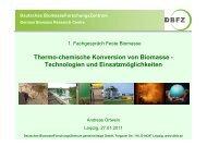 Thermo-chemische Konversion von Biomasse - Technologien und ...