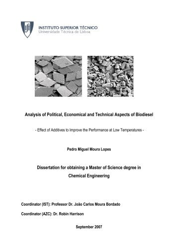 Analysis of Political, Economical and Technical Aspects of Biodiesel ...