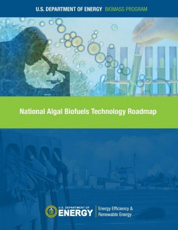 Download the Algal Biofuels Roadmap draft document - Sandia