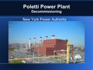 Plant Closure, Remediation and Redevelopment - Options ...