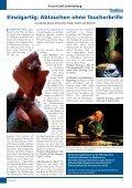 Lübecker Wasser- Marionetten-Theater in der ... - der findling - Page 5