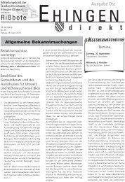39 - Stadt Ehingen