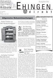 48 - Stadt Ehingen