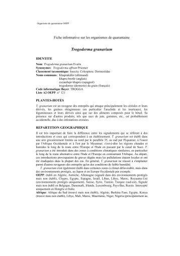 Organisme de quarantaine OEPP