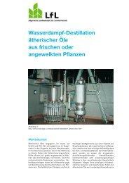 Wasserdampf-Destillation ätherischer Öle aus frischen - Bayerische ...