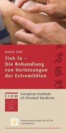 Tieh Ta – Die Behandlung von Verletzungen der Extremitäten