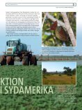 SVINEPRODUKTION GGER NATUR I SyDAMERIKA - Page 2