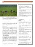 SVINEPRODUKTION GGER NATUR I SyDAMERIKA - Page 3